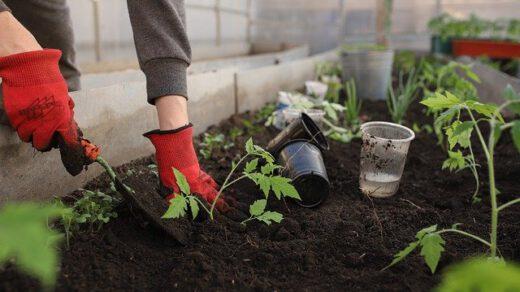 folije za vrt